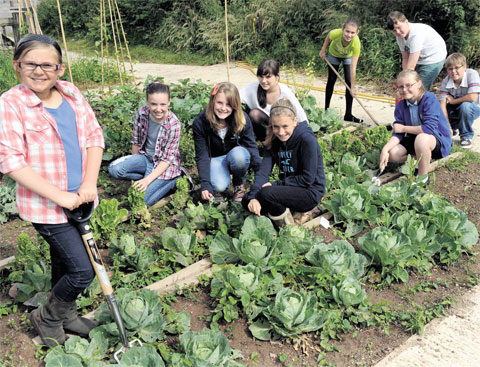 Big Lottery cash on offer to grow food