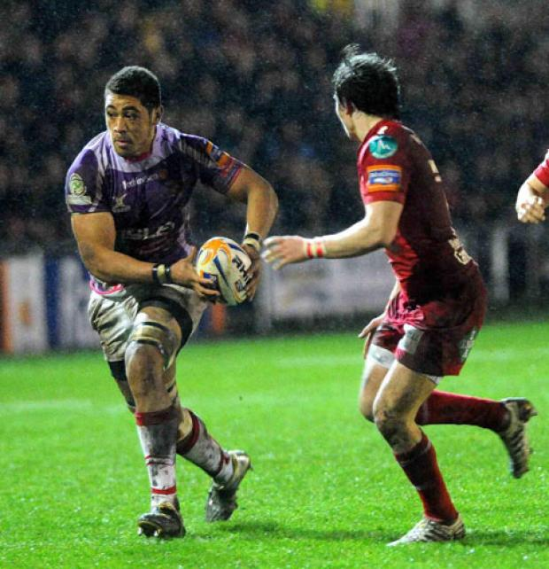 MAIN THREAT: The Scarlets will need to keep Dragons star Toby Faletau in check says coach Danny Wilson
