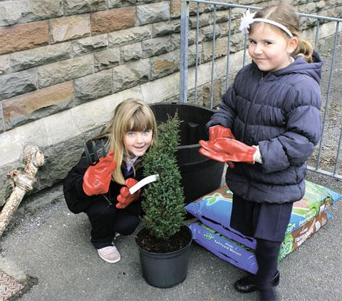 PLANTING: Youngsters Twyn Primary School, Caerphilly get to work