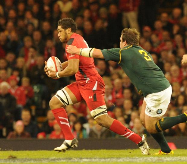 Faletau the only Dragon bound for South Africa