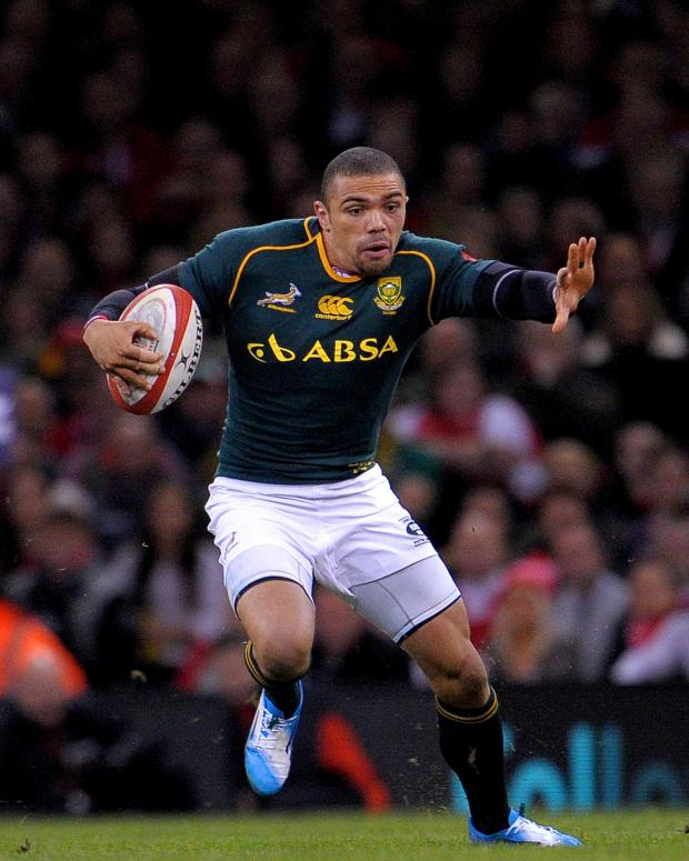 Campaign Series: TRY SCORER: Bryan Habana dashed over for the Springboks
