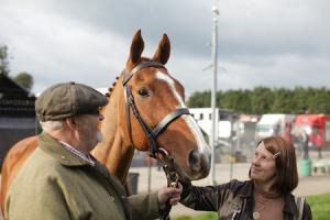 Blackwood film premiere for local racehorse hero