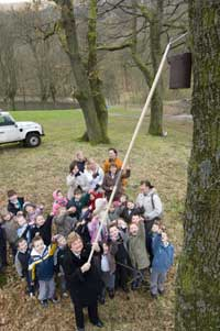 Councillor Annette Davies hooks a bird box on to a tree as pupils look on