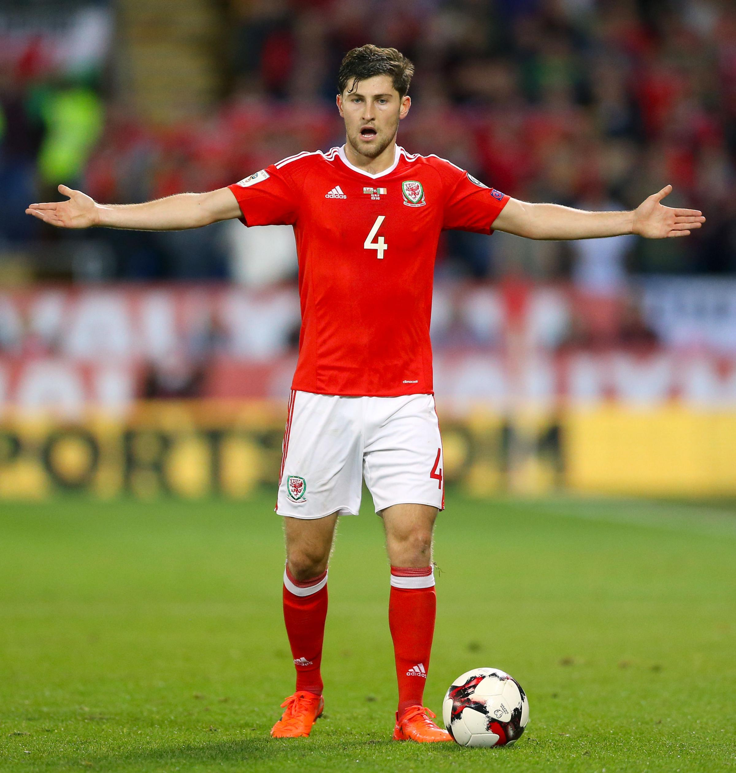LOOKING FORWARD: Wales defender Ben Davies