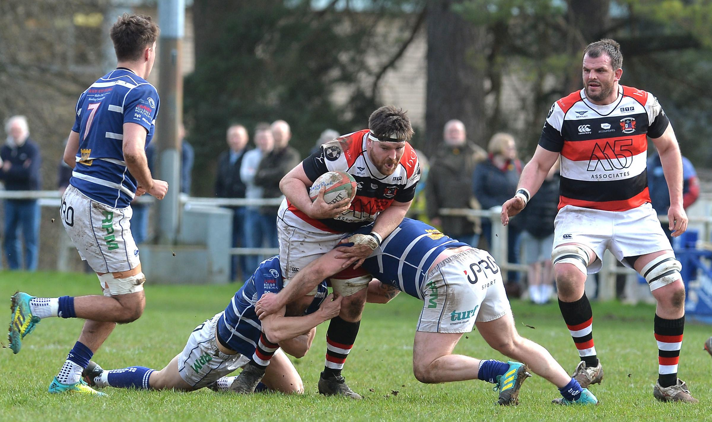 GRUNT UP FRONT: Flanker Scott Matthews and the rest of the Pontypool pack will fly into Merthyr (Picture: www.christinsleyphotography.co.uk)